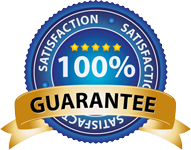 LOK BUSINESS GUARANTEE BADGE